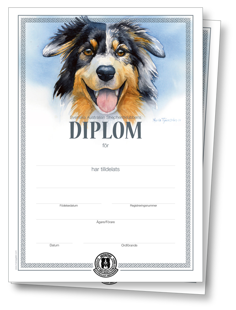 SASKs Diplom