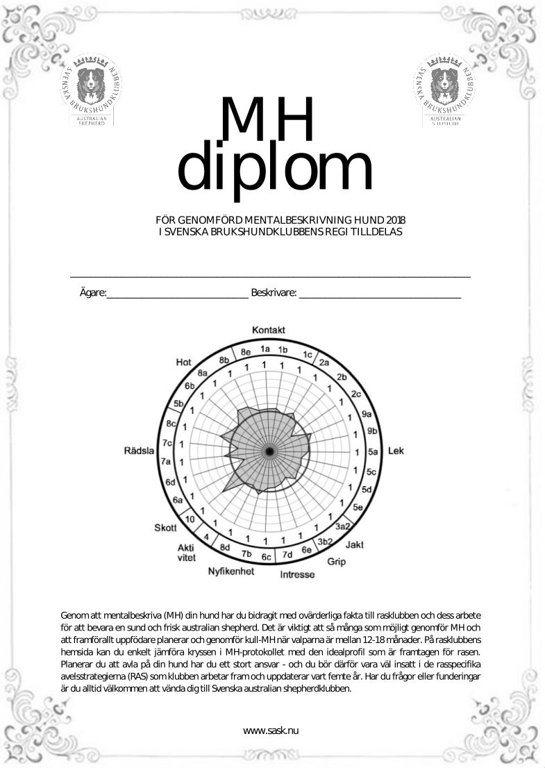 MH Diplom