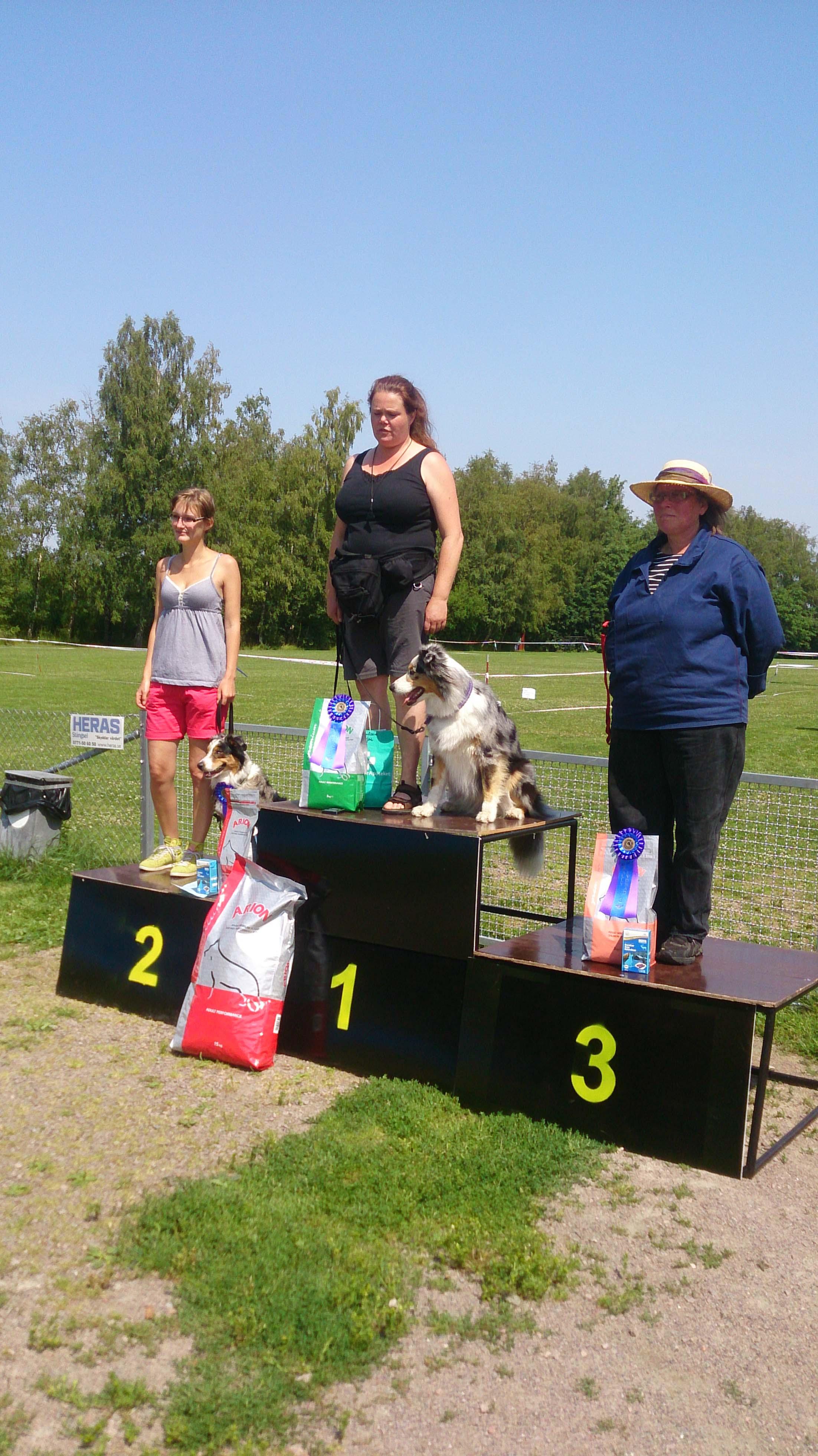 Vinnare Nybörjarklassen Rasmästerskapen 2014